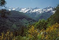 Europe/France/Midi-Pyrénées/09/Ariège/Couserans/Env Col de la Core: Vue sur la chaîne des Pyrénées vers le Mont Rouch