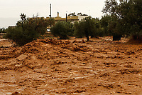 Pictured:A local olive grove has turned into a river.<br /> Re: Five people have reportedly died and severe damage caused by heavy rain and flash flooding in the area of Mandra, near Athens, Greece. Wednesday 15 November 2017