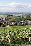 Germany, Baden-Wuerttemberg, Markgraefler Land, wine village Auggen, overview