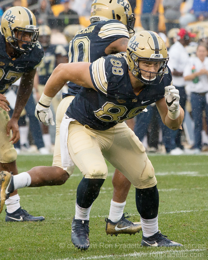 Pitt tight end Matt Flanagan. The Pitt Panthers defeated the Youngstown State Penguins 28-21 in overtime at Heinz Field, Pittsburgh, Pennsylvania on September 02, 2017.