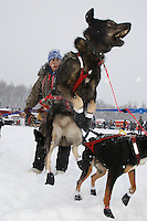 One of Charlie Allison's team dogs is excited to leave the pit area just prior to the start of the 2009 Junior Iditarod on Knik Lake on Saturday Februrary 28, 2009.
