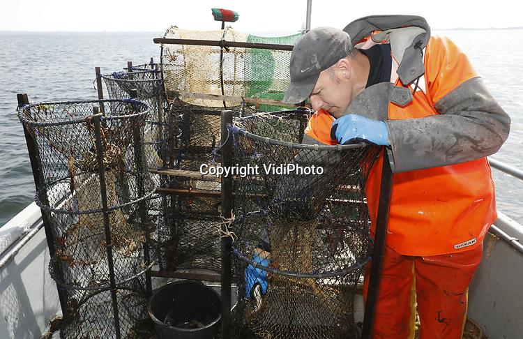 Foto: VidiPhoto<br /> <br /> YERSEKE - Het seizoen voor de kreeftenvisserij is in volle gang en duurt van half maart tot half juli. De zwagers Maurice Boone (foto) en Markus Wijkhuis uit Yerseke runnen samen een vissersbedrijf met twee kotters en een werkvlet. Naast het kweken van oesters, vissen ze op kreeften en paling. Volgens de vissers zijn er teveel vergunninghouders, waardoor de visserijdruk op de Oosterschelde is toegenomen en de vangsten tegenvallen. Ondanks dat de horeca gesloten is, staan de prijzen voor de gewilde Oosterschelde kreeft niet onder druk.