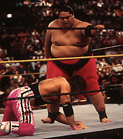 Yokozuna vs Bret Hart  1993<br /> Photo By John Barrett/PHOTOlink