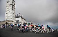 grupetto over the Mont Ventoux<br /> <br /> Stage 11 from Sorgues to Malaucène (199km) running twice over the infamous Mont Ventoux<br /> 108th Tour de France 2021 (2.UWT)<br /> <br /> ©kramon