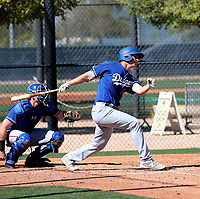 Dillon Paulson - Los Angeles Dodgers 2019 spring training (Bill Mitchell)