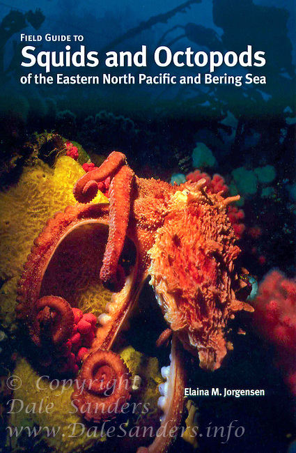 """Cover of """"Field Guide to Squids and Octopods of the Eastern North Pacific and Bering Sea"""" book with an Image of a Giant Pacific Octopus."""