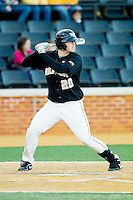 Jack Carey (20) of the Wake Forest Demon Deacons at bat against the West Virginia Mountaineers at Wake Forest Baseball Park on February 24, 2013 in Winston-Salem, North Carolina.  The Demon Deacons defeated the Mountaineers 11-3.  (Brian Westerholt/Four Seam Images)