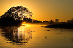 A river is bathed in the golden light of sunrise in the Pantanal, Mato Grosso, Brazil.