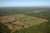 Mato Grosso State, Brazil. Aerial view of recently cleared rainforest; rectangular plots in the forest.