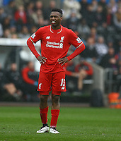 Daniel Sturridge of Liverpool shows a look of dejection after missing a free kick during the Barclays Premier League match between Swansea City and Liverpool played at the Liberty Stadium, Swansea on 1st May 2016