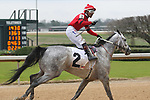 February 17, 2020: Jockey Ricardo Santana Jr. aboard Silver Prospector (2) celebrating after crossing the finish line, winning the Southwest Stakes at Oaklawn Racing Casino Resort in Hot Springs, Arkansas on February 17, 2020. Justin Manning/Eclipse Sportswire/CSM