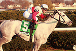 """Hit It Rich with Javier Castellano win the Grade 3 Long Island Handicap for filliies and mares, 3-year old & up, at 1 1/2 miles on the turf, at Aqueduct Racetrack.  Trainer Claude """"Shug"""" McGaughey.  Owner Stuart S. Janney III"""