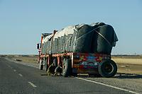 EGYPT, Farafra, truck transport potatos from desert farms to Cairo and for export / AEGYPTEN, Farafra, LKW transportiert Kartoffeln aus Wuestenfarmen nach Kairo und zum Export