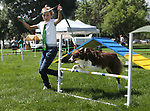 4-H member Karlie LaFever, of Reno, and her dog Bailey run the dog agility course at the Carson City Fair at Fuji Park on Tuesday, July 25, 2017. For more information about the fair, which run through Sunday, go to carsoncitynvfair.com.<br />Photo by Cathleen Allison/Nevada Photo Source
