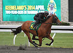 April 03, 2014: Hip 57  Lemon Drop Kid - Texas Kitty consigned by Sequel Bloodstock worked 1/8 in 09:4.  Candice Chavez/ESW/CSM