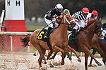 February 28, 2021: Monomoy Girl #6 , ridden by Florent Geroux wins the Bayakoa Stakes (Grade 3) for trainer Brad H. Cox at Oaklawn Park in Hot Springs,  Arkansas. Ted McClenning/Eclipse Sportswire/CSM