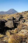 Mt. Ngauruhoe, Alpine terrain