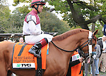 Fast Falcon, ridden by Corey Nakatani, runs in the TVG Jockey Club Gold Cup Invitational Stakes (GI) at Belmont Park in Elmont, New York on September 29, 2012.  (Bob Mayberger/Eclipse Sportswire)
