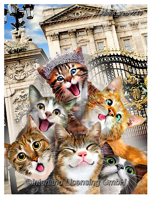Howard, REALISTIC ANIMALS, REALISTISCHE TIERE, ANIMALES REALISTICOS, selfies,cats,buckingham palace,queen, paintings+++++,GBHRPROV243,#a#, EVERYDAY