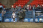 PBR - Wheeling, WV - 3.20.2015 - Bulls & Action