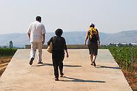 Visitors walking up the slope to a viewpoint with the vineyard manager. Vineyard on the plain near Mostar city. Hercegovina Vino, Mostar. Federation Bosne i Hercegovine. Bosnia Herzegovina, Europe.