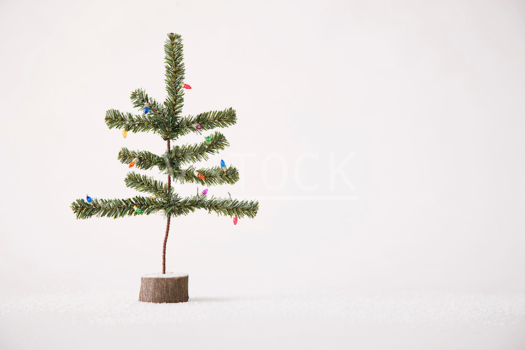 Small Christmas tree against white background