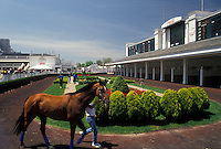 AJ4174, Churchill Downs, race track, horse, Louisville, Kentucky, Trainer exercises a thoroughbred horse at Churchill Downs the historic racetrack of the Kentucky Derby in Louisville in the state of Kentucky.