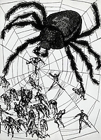 Cross-spider, A Bartsch, Horst (b. 1821 German)