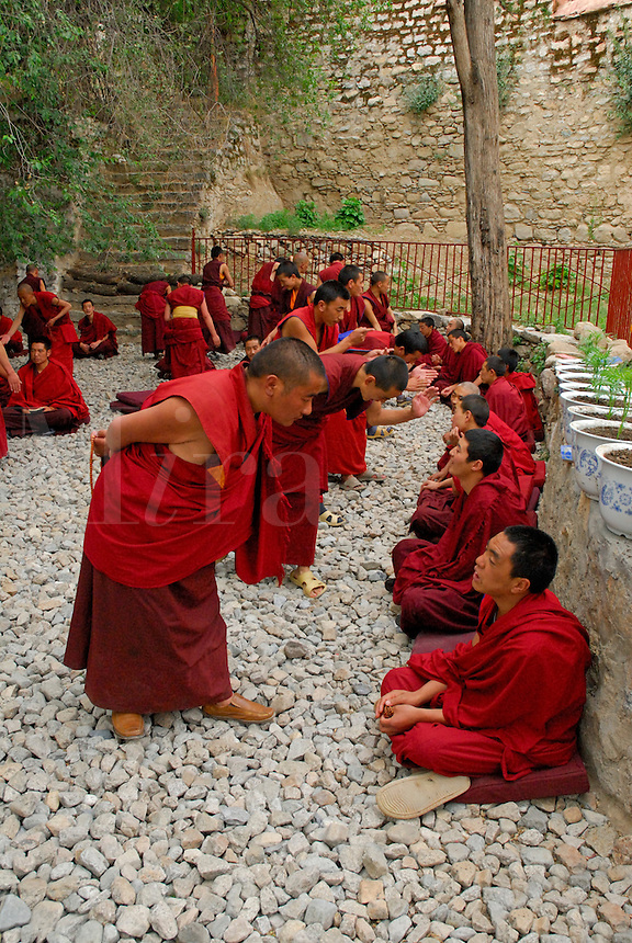 Novice Gelugpa monks debate Buddhist philosophy in the courtyard at Drepung monastery, Lhasa, Tibet, China.