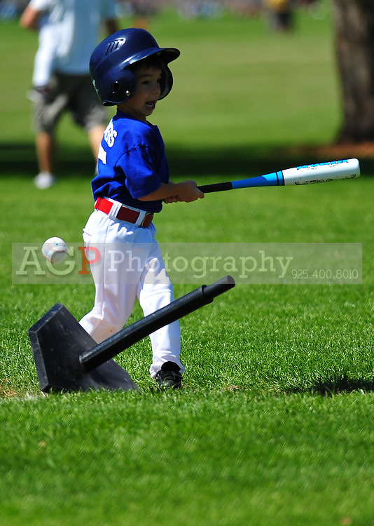 The T-Ball Cubs at the Pleasanton Sports Park May 1, 2010. (Photo by Alan Greth)