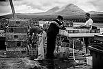 Fisherman at the dockside. From Islay looking to Jura. with a crab weighing in.
