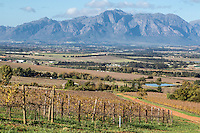 South Africa, Paarl area, near Cape Town.  Scenic Landscape.  Vineyard in winter on the left.