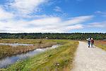 Nisqually River Delta, Nisqually National Wildlife Refuge, Washington State.