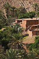 Afrique/Afrique du Nord/Maroc/Env d'Immouzer: Ferme  et palmeraie dans  la Vallée du Bonheur