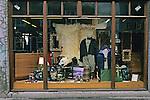 Store Window, Reykjavik
