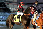 Pin and Win the 144th running of the Grade II Jerome Stakes for 3-year olds, going 1 mile 70 yards on the inner dirt, at Aqueduct Racetrack.