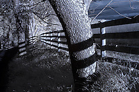 Buckingham County, Virginia photographed in infrared. Photo/Andrew Shurtleff