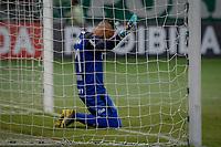 SÃO PAULO, SP 23.02.2019: PALMEIRAS-SANTOS - Weverton. Palmeiras e Santos em jogo válido pela oitava rodada do campeonato Paulista 2019, no Allianz Parque zona oeste da capital. (Foto: Ale Frata/Codigo19)