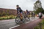 Arnhem Veenendaal Classic , UCI 1.1, Posbank, Rheden, The Netherlands, 22 August 2014, Photo by Thomas van Bracht / Peloton Photos