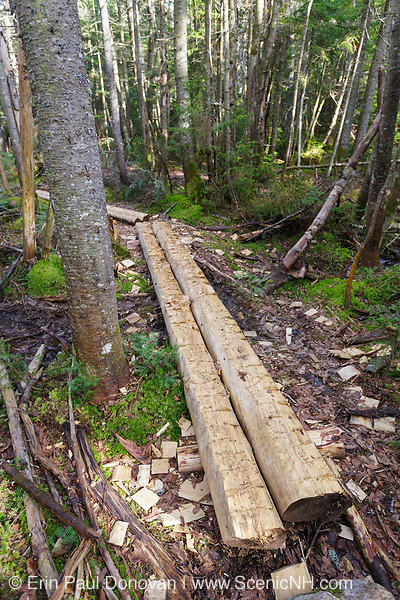 Trail puncheons (bog bridges) along the Lincoln Brook Trail in the Pemigewasset Wilderness of the New Hampshire White Mountains. Puncheons are used in wet areas along trails. Because this is a designated wilderness area, trail work is minimal and done in a way that is preserves the wilderness character of the Pemi Wilderness.