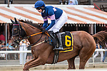 August 18, 2021: #6 The Mean Queen ridden by Thomas Garner in the post parade before the start of the Grade 1 Jonathan Sheppard Handicap at Saratoga Race Course in Saratoga Springs, N.Y. on August 18, 2021. <br /> Robert Simmons/Eclipse Sportswire/CSM
