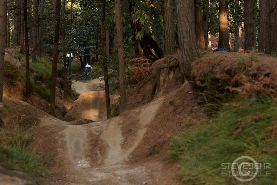 Sandy Cutting jump gulley , Swinley Forest , Bracknell , Berks    October 2011 pic copyright Steve Behr / Stockfile