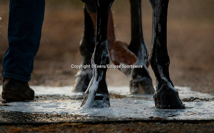 April 26, 2021: Scenes from morning workouts at Churchill Downs in Louisville, Kentucky on April 26, 2021. EversEclipse Sportswire/CSM