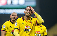 during the EPL - Premier League match between Watford and Hull City at Vicarage Road, Watford, England on 29 October 2016. Photo by Andy Rowland.