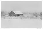 Winter Barn | February 2014