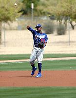 Errol Robinson - Los Angeles Dodgers 2018 spring training (Bill Mitchell)