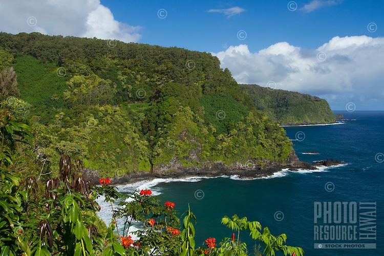 Hana coastline near Keanae, Maui, Hawaii.