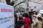 A security guard guides cherry blossoms lovers at the entrance of Chidorigafuchi on April 1, 2016, Tokyo, Japan. On Thursday, the Japan Meteorological Agency announced that Tokyo's cherry trees were in full bloom, three days earlier than usual, but two days later than last year. Chidorigafuchi is one of the most popular spots during this season, where thousands of visitors come to see the cherry blossom trees that line the Imperial Palace moat. (Photo by Rodrigo Reyes Marin/AFLO)