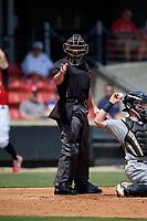 Umpire Kyle Nichol calls a strike during a Carolina League game between the Winston-Salem Dash and Carolina Mudcats on August 14, 2019 at Five County Stadium in Zebulon, North Carolina.  Winston-Salem defeated Carolina 4-2.  (Mike Janes/Four Seam Images)