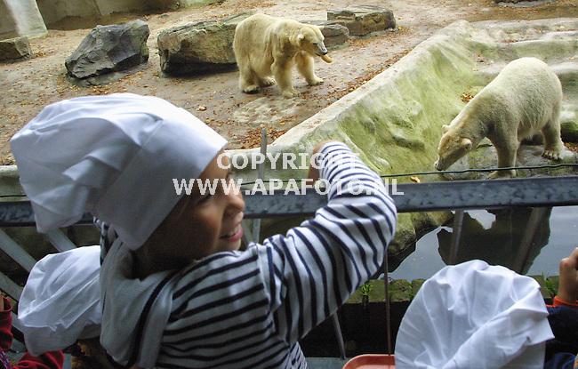 Rhenen, 031001<br />In Ouwenhands dierenpark maken kinderen eten voor de dieren. De koks kijken toe hoe de ijsberen broodjes haring eten.<br />Foto: Sjef Prins / APA Foto